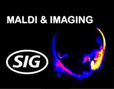 MALDI and Imaging